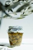 Fotografia vasetto di olio aromatico con olive verdi e rami sulla tabella bianca