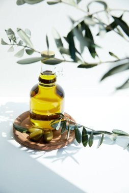 bottle with aromatic oil with green  olives on wooden board and branches on white table