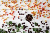 Fotografie top view of red and rainier sweet cherries in cup and spilled on white wooden surface with leaves
