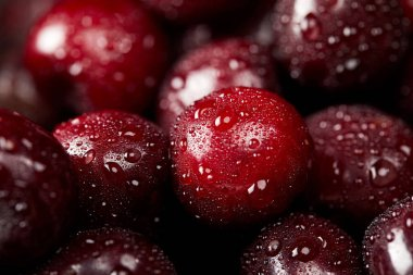 close-up shot of ripe red sweet cherries covered with water droplets