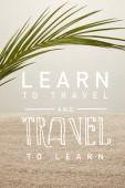 pohled zelených Palmový list a písku na šedém pozadí na plochu, Naučte se cestovat a cestovat Další nápis