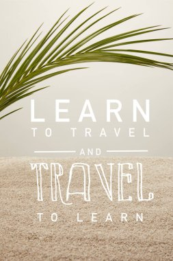 Close up view of green palm leaf and sand on grey backdrop, learn to travel and travel to learn inscription stock vector