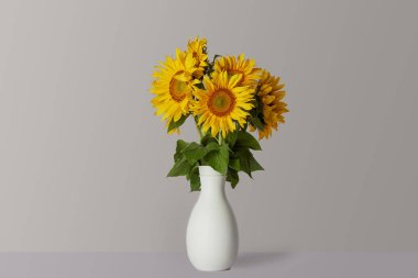Bouquet of yellow sunflowers in white vase, on grey stock vector