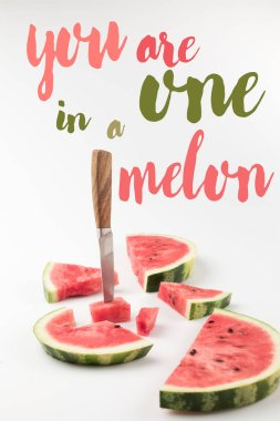 Red fresh watermelon slices with knife isolated on white, with inspection stock vector
