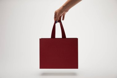cropped image of woman holding burgundy shopping bag in hand isolated on white