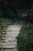 selective focus of wooden path between green grass in park