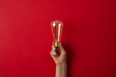 Cropped shot of woman holding vintage incandescent lamp on red surface stock vector