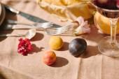 Fotografia prugne e utensili sulla tovaglia beige in giardino