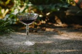 Fotografie one glass of red wine on road in garden