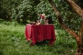 Fotografie sloužit tabulka s jídlem a pitím v zahradě
