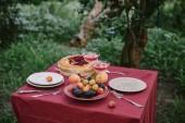 Fotografia bicchieri di vino, torta di frutti di bosco, piastre e frutta sul tavolo in giardino