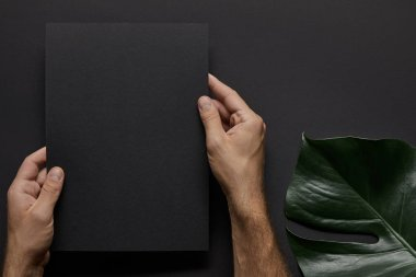 Male hands holding black notebook on black background with green leaf