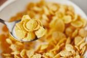 Fotografie zblízka pohled na lžíci a corn flakes s mlékem na snídani