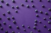 Fotografia vista superiore del cerchio di mirtilli sulla superficie viola