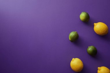top view of limes and lemons on violet surface