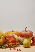 Fotografie autumn decoration with pumpkins, pyracantha berries and ripe yummy pears on table