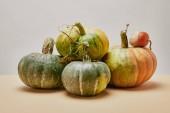 Fotografie autumnal harvest of different green pumpkins on table