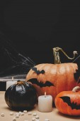 Photo paper bats and spider on halloween pumpkins