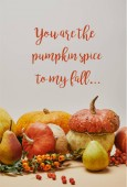 autumnal decoration with pumpkins, firethorn berries and ripe yummy pears on tabletop with YOU ARE PUMPKIN SPICE TO MY FALL lettering