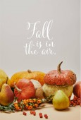 Fotografie autumnal decoration with pumpkins, firethorn berries and ripe yummy pears on tabletop with FALL IS IN THE AIR lettering