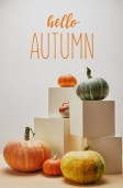 autumnal decoration with orange, yellow and green pumpkins on cubes and table with HELLO AUTUMN lettering