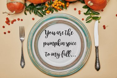 Top view of plates and pumpkins with firethorn berries on thanksgiving table with YOU ARE PUMPKIN SPICE TO MY FALL lettering stock vector