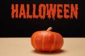 Fotografie Jedna oranžová dýně na tabulka s nápisem halloween