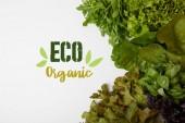 felülnézet friss fehér felületen enni organikus felirat különböző leveles zöldségek