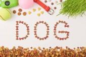 plochý ležela s nápisy psa prováděné v zájmovém poblíž trávu, kuličky a obojek na bílý povrch