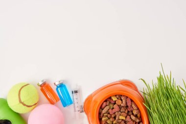 top view of balls, grass, plastic bowl with dog food, syringe and colorful bottles with medications on white surface
