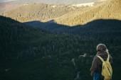 zadní pohled na ženské cestovatel pohledu na zelené hory, Karpaty, Ukrajina
