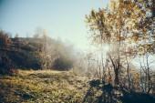 krásné mlhavé krajina v regionu Karpaty, Ukrajina