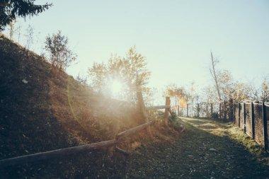 Pathway on hill under sunlight in Carpathians, Ukraine stock vector