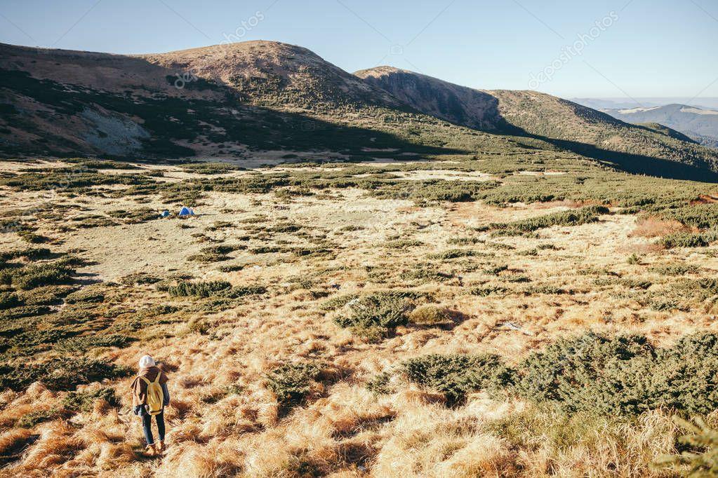 rear view of woman standing on beautiful mountain valley, Carpathians, Ukraine