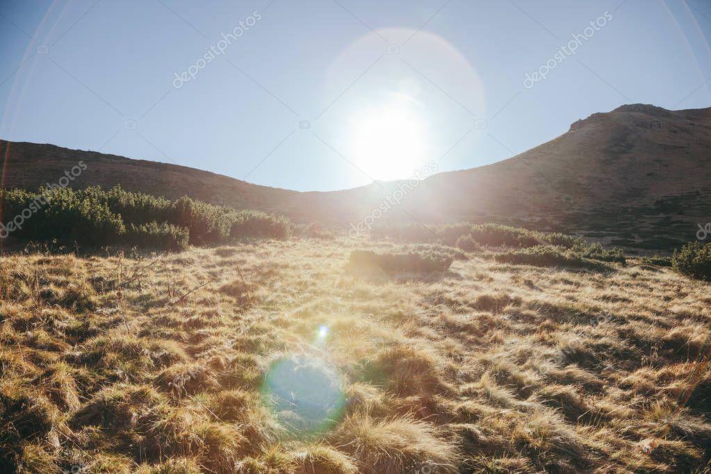 beautiful mountains landscape with sunlight flare, Carpathians, Ukraine