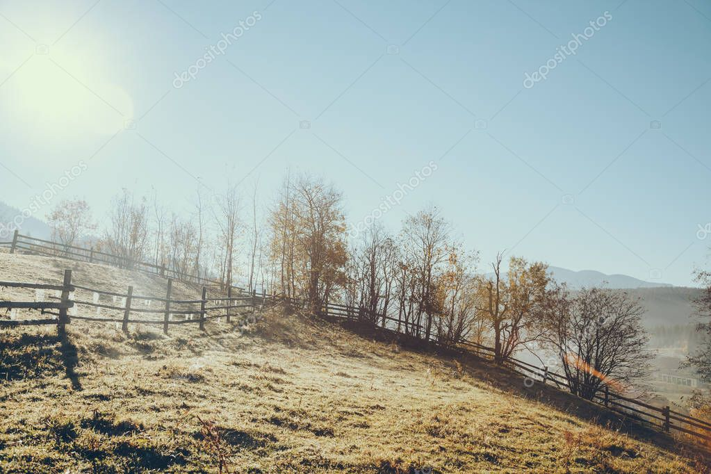 wooden pasture fence in Vorokhta on sunny day, Carpathians, Ukraine
