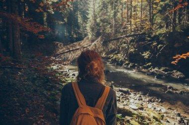 Rear view of female traveler standing in mountain forest, Carpathians, Ukraine stock vector