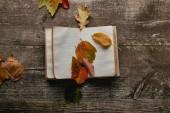 Fotografie plochý ležela s podzimní listí a prázdné notebook na dřevěný povrch
