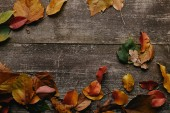 Fotografie flat lay with colorful fallen leaves on wooden surface