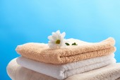 Fotografie close-up view of beautiful white chamomile flower on pile of clean towels isolated on blue