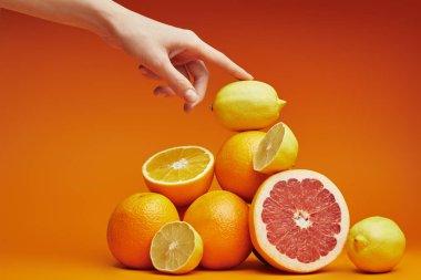 cropped shot of person touching pile of fresh ripe citrus fruits on orange