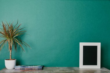 Plants, photo frame and journals on green background