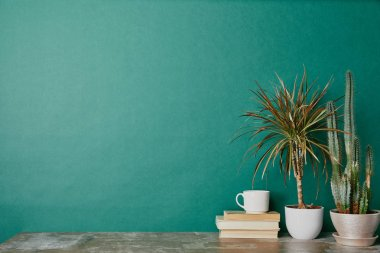 Cup of coffee on books and plants in flowerpots on green background