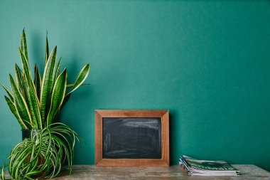 Plants in flowerpots, magazines and empty photo frame on table green background