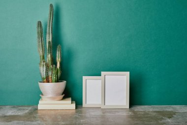 Cactus in flowerpot on books and empty photo frames on green background