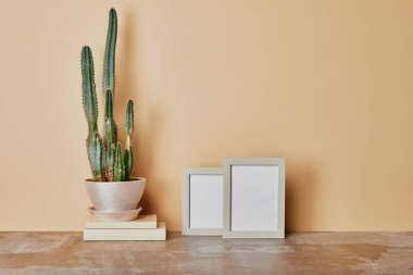 Cactus plant and photo frames on table on beige background