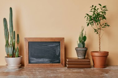 Different plants, wooden photo frame and books on beige background stock vector
