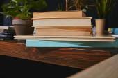 Detail knihy a pokojové rostliny na dřevěný stůl