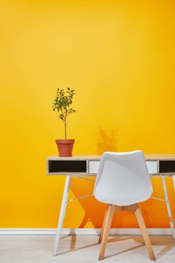Plant in flowerpot on wooden table near bright yellow wall stock vector
