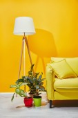 Sofa, green plants and floor lamp near yellow wall